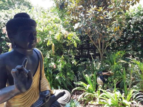 Beautiful Meditation Gardens at the Brisbane Pranic Healing Centre